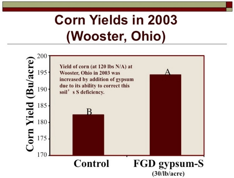 Corn Yields in 2003 (Wooster, Ohio)